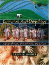 Cultural Anthropology: Adaptations, Structures, Meanings - David W. Haines