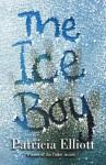 The Ice Boy - Patricia Elliott