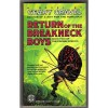The Return of the Breakneck Boys - Geary Gravel