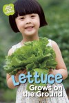 Lettuce Grows on the Ground - Taylor Jones, Anne Faundez