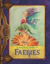 A Practical Guide to Faeries - Susan J. Morris