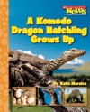A Komodo Dragon Hatchling Grows Up (Scholastic News Nonfiction Readers: Life Cycles) - Katie Marsico