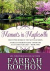 Moments In Maplesville Bundle Edition: A Perfect Holiday Fling & A Little Bit Naughty - Farrah Rochon