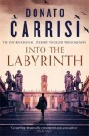 Into the Labyrinth - Donato Carrisi