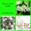 How to Grow Garlic - Linda Gray