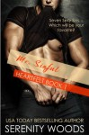 Mr. Sinful (Heartfelt Book 1) - Serenity Woods