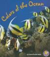 Colors of the Ocean - Laura Purdie Salas
