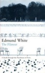 The Flâneur: A Stroll through the Paradoxes of Paris - Edmund White