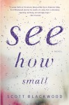 See How Small: A Novel - Scott Blackwood