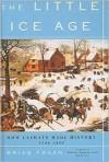 Little Ice Age (School & Library Binding) - Brian M. Fagan