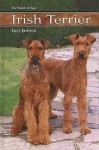 Irish Terrier (World of Dogs) - Lucy Jackson