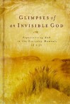 Glimpses of an Invisible God: Experiencing God in the Everyday Moments of Life - Honor Books, Stephen Parolini