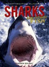 Sharks and Other Fish - Andrew Solway