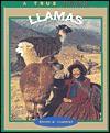 Llamas - Emilie U. Lepthien