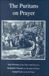 The Puritans on Prayer - John Preston, Nathaniel Vincent, Samuel Lee