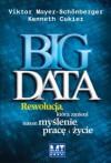 Big Data - Rewolucja, która zmieni nasze myślenie, pracę i życie - Viktor Mayer-Schönberger, Kenneth Cukier
