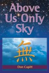 Above Us Only Sky - Don Cupitt