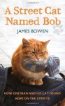 A Street Cat Named Bob: How One Man and His Cat Found Hope on the Streets - James Bowen