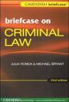 Briefcase on Criminal Law - Michael Bryant