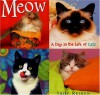 Meow: A Day In The Life Of Cats - Judy Reinen
