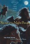 Secret of the Night Ponies - Joan Hiatt Harlow
