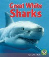 Great White Sharks - Leighton Taylor