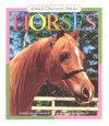 Horses - Vicky Shiotsu, Paul Lopez