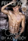Caught By A Cowboy (Cameron Ranch Series) - Felice Fox