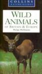 Wild Animals Of Britain & Europe - Helga Hofmann, Martin Walters, Gordon Corbet
