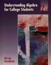 Understanding Algebra for College Students - Arthur Goodman