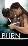 Burn - Crystal Hubbard