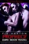 Prophecy: Dark Moon Rising (Vampires Realm #3) - Felicity Heaton
