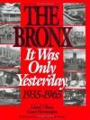 The Bronx: It Was Only Yesterday (Life in the Bronx Series) - Lloyd Ultan, Gary Hermalyn, Gary D. Hermalyn