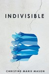 Indivisible: Coming Home to Our Deep Connection - Christine Mason