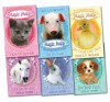 Holly Webb Magic Molly 6 Books Collection Children Animal Pack - Holly Webb