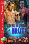Enslaved by a Brute (Sold! 4) - Anitra Lynn McLeod