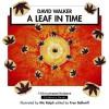 A Leaf in Time - David Walker