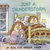 Just a Thunderstorm (Look-Look) - Gina Mayer, Mercer Mayer
