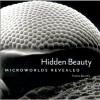 Hidden Beauty: Microworlds Revealed - France Bourely, Laurel Hirsch