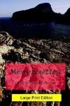 Merrybegotten (Large Print) - Fiona Pearson