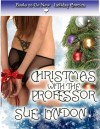 Christmas with the Professor - Sue Lyndon