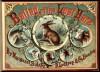 Ballad of the Lost Hare (Original Illustrations) (Classic Books for Children) - Margaret Sidney