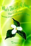 What's This Life All about What's This Life All about: The Collection (Poems, Prayers and Lyrical Writings) the Collection (Poems, Prayers and Lyrical - Tracy