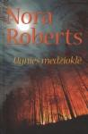 Ugnies medžioklė - Jolita Parvickienė, Nora Roberts