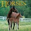 Horses - Laura Driscoll