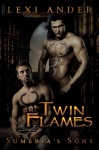 Twin Flames - Lexi Ander