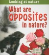 What Are Opposites in Nature? - Bobbie Kalman