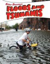 Floods and Tsunamis - Doreen Gonzales