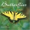 Butterflies - David Badger, Brian Kenney