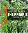 The Prairie: An Enduring Spirit - Charles Rotter